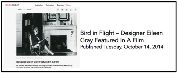 Bird in Flight 14 Oct